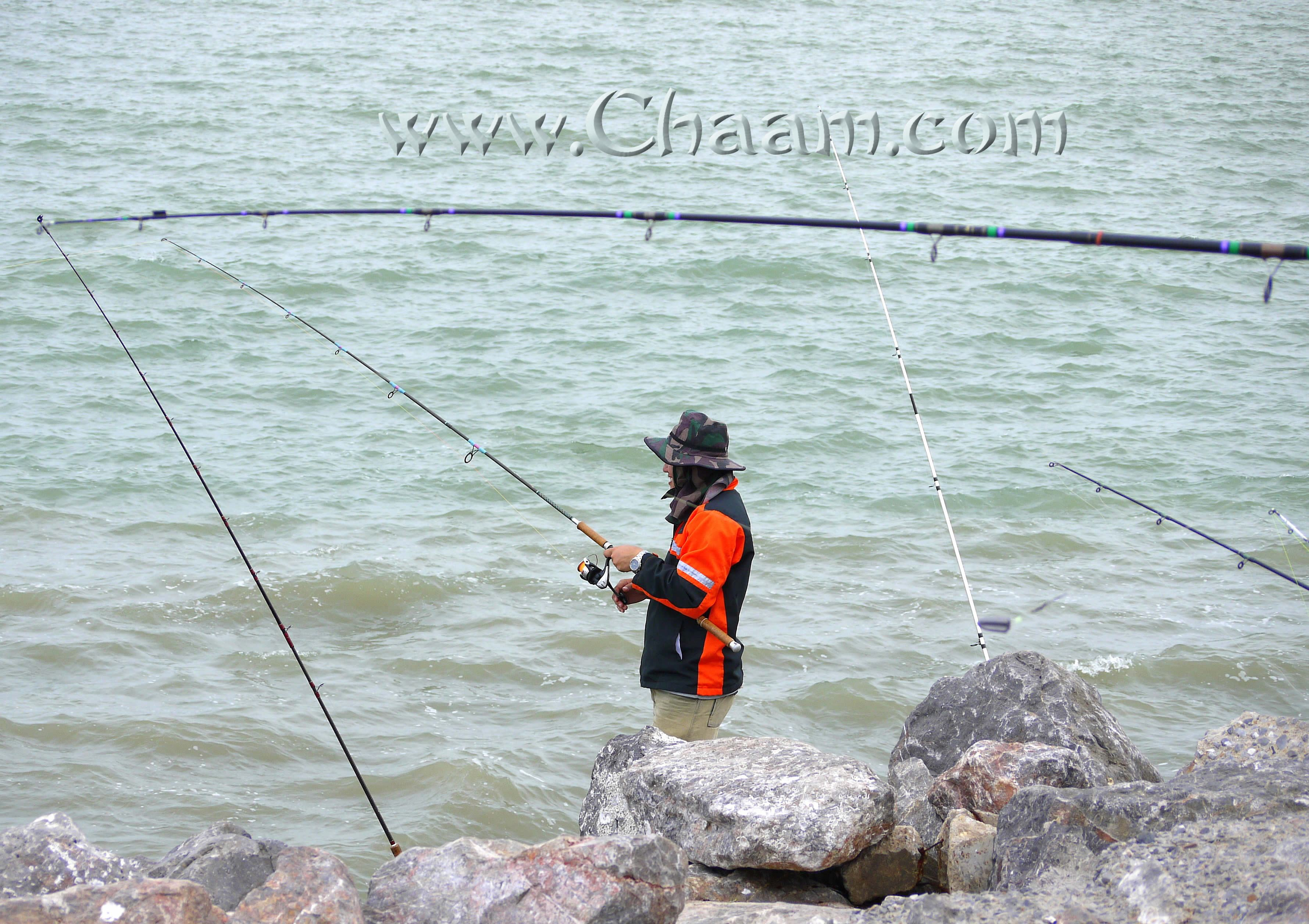 Fishing village cha am trips and best sea food restaurants for Big fishing pole