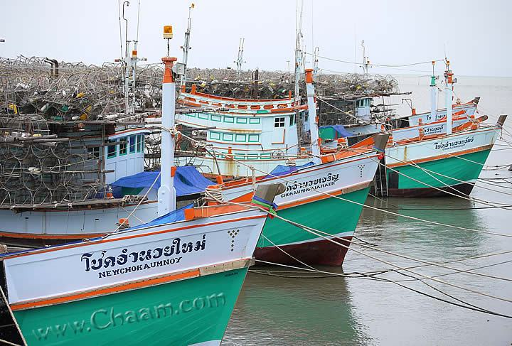 Cha-Am fishing boats for lobster