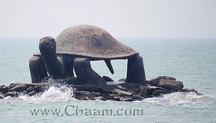 Giant turtle in the Ocean Puek Tian