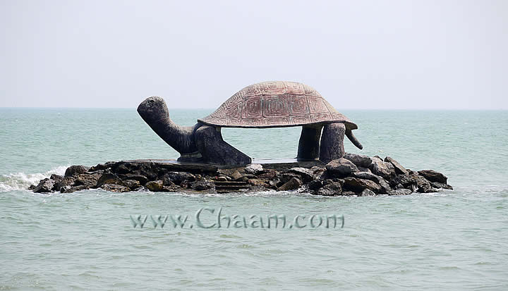 giant turtle on rocky island Puek Tian