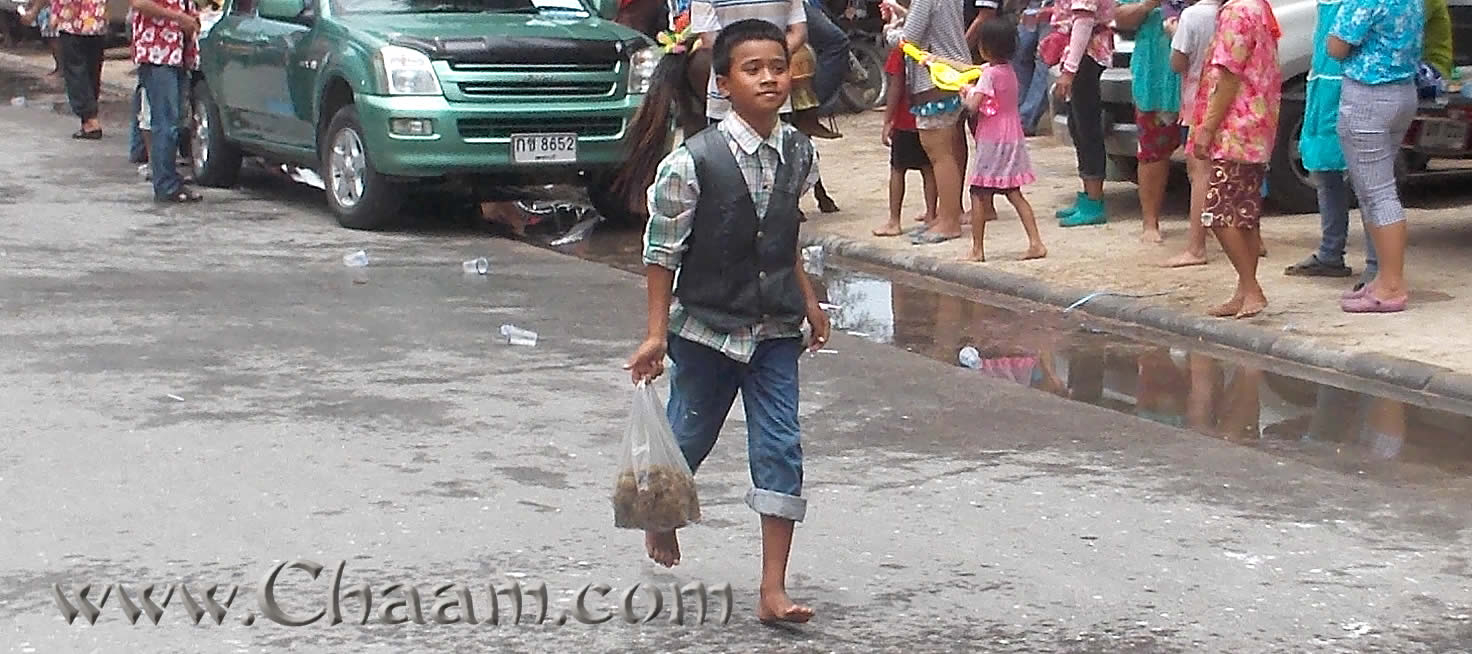 Horse dung boy in Cha-Am Thailand